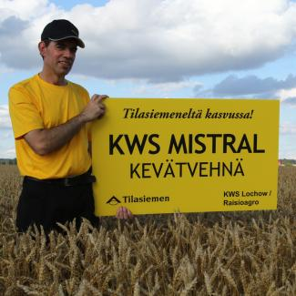 Kevätvehnä KWS Mistral, Tilasiemen